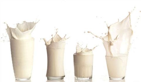 No a la leche de vaca para menores de un año