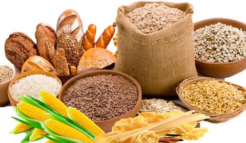 ¿Qué tan importante es calcular los carbohidratos netos?